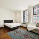 Просторная квартира класса люкс в Бруклине
